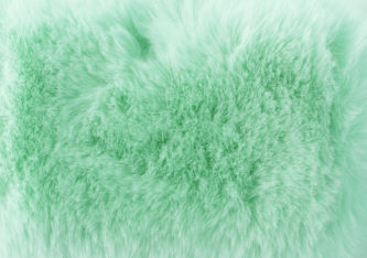 a soft fur texture in a neo mint colour.